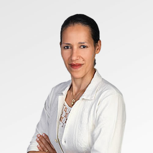 Dr. DI Salma Michor